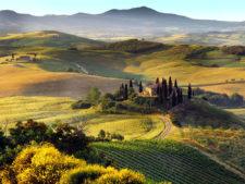 Come organizzare un tour enogastronomico in Toscana